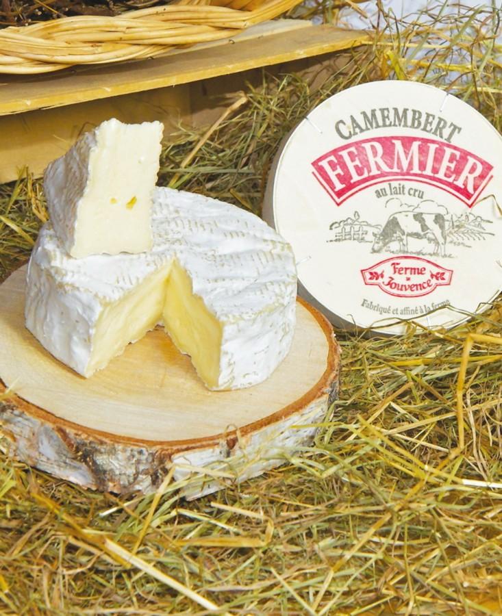Camembert fermier bio lait cru