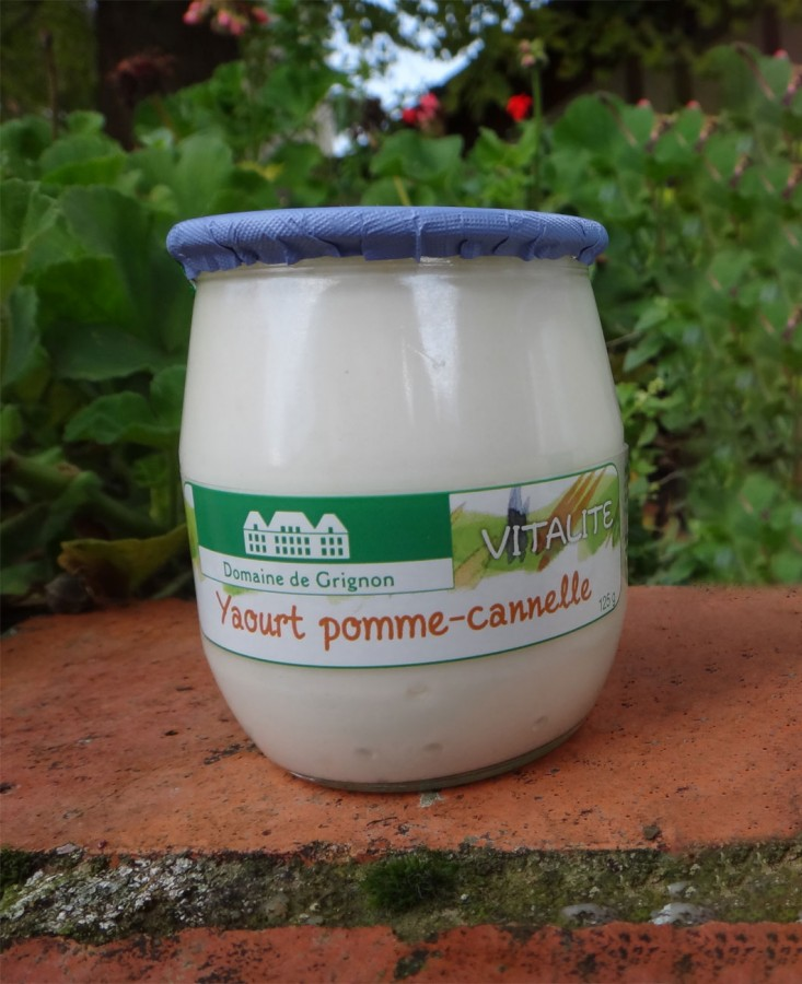Yaourt pomme cannelle (2...